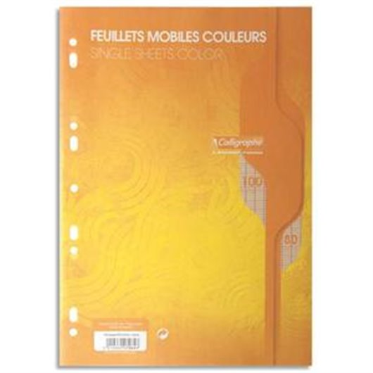 Feuillets mobiles jaune perf 2trous 80g 100pges grands carreaux format A4