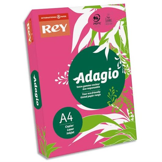 INA R/500F ADAG A4 80G GRENA INT 8001598