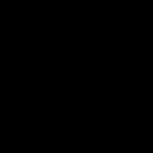 WONDAY Ciseaux INITIAL à anneaux symétriques et bouts pointus. Lames 19cm