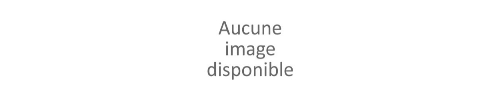 Cartouche toner Konica Minolta